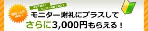 とくモニ デビュー 3000円